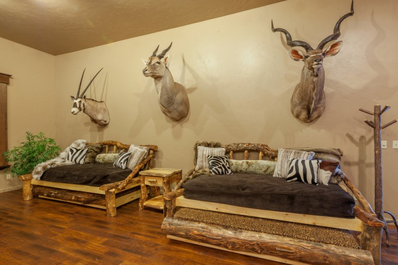 Bring Wildness In Your Safari Rooms Decohoms