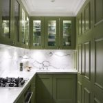 Interior Designs For Small Space Green Wall Cabinets White Ceiling Stove Lighting Contemporary Kitchen