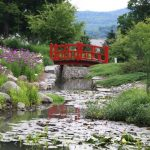 japanese garden exhibition model pond flowers trees grass water red bridge traditional landscape