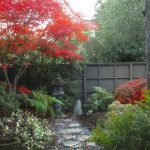 Japanese Garden Exhibition Model Red Leaves Stone Path Flowers Trees Asian Landscapes