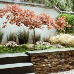 Japanese Garden Exhibition Model Stones Grass Plants Wall Japanese Maple Asian Landscape