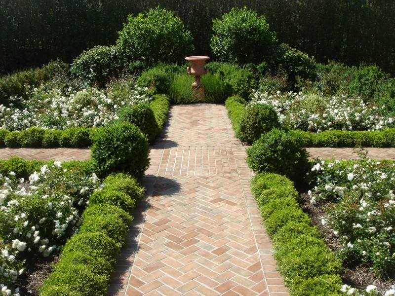 landscape with brown orange path, plants wall on both sides, white flowers on both sides