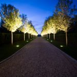 Trees Uplighter For Traditional Landscape