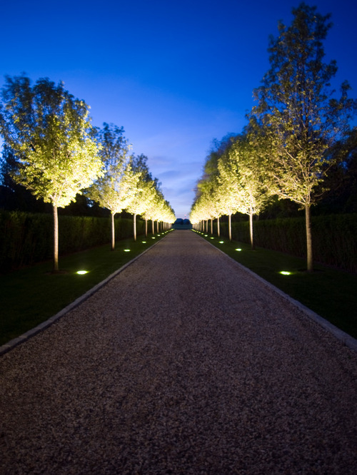Outdoor Driveway Lighting 10 divine ideas of driveway lighting decohoms trees uplighter for traditional landscape workwithnaturefo