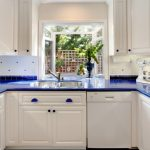 garden windows for kitchen double bowl sink blue countertops flat panel cabinets glass front shelves appliances decorative plants faucet traditional design