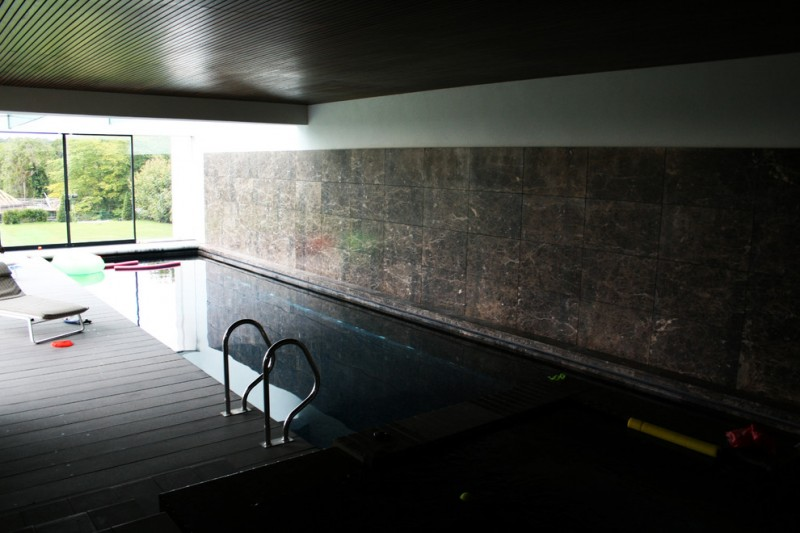 modern interior pool featured with whirl pool and spa pool glass sliding door dark glass mosaic walls