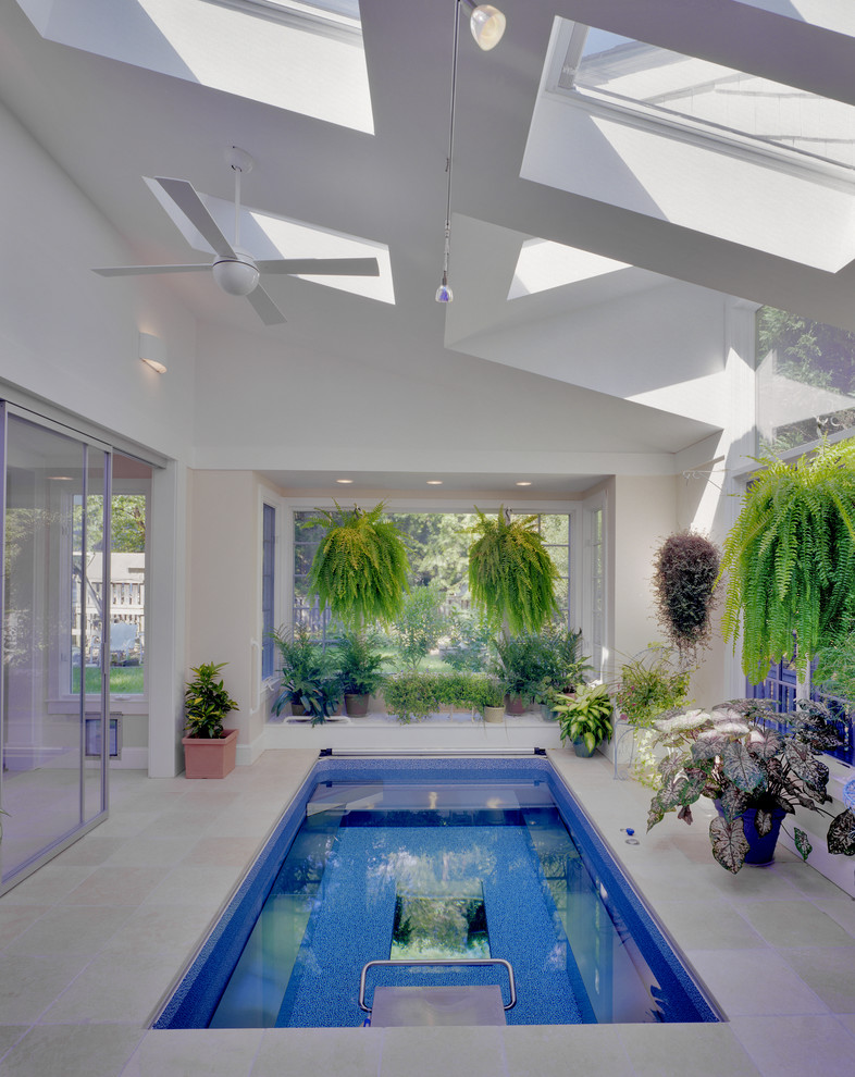 modern interior pool with skylights enclosure clean white walls glass windows vivid plants mid size rectangular pool
