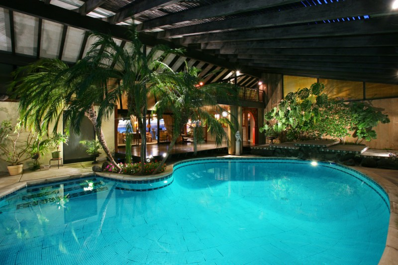 tropical interior pool idea black painted pool enclosure with black ceilings and wood beams several tropical theme plants custom pool