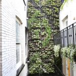 vertical garden plans black railing white brick walls planters windows door contemporary design