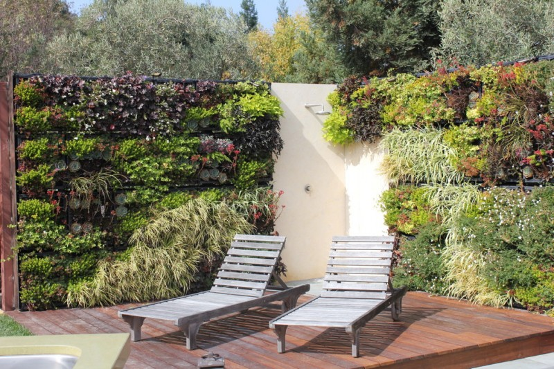 vertical garden plans decking pool longues planters outdoor shower contemporary design