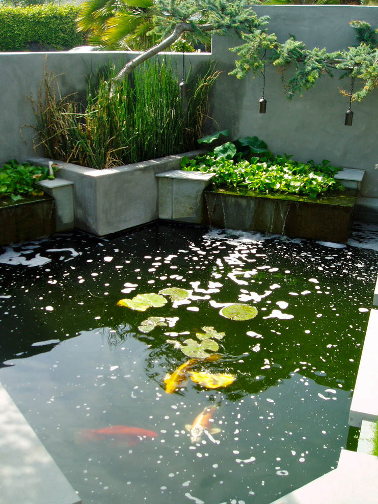 Charmingly beautiful back yard ponds to take a long look for Concrete fish pond construction and design