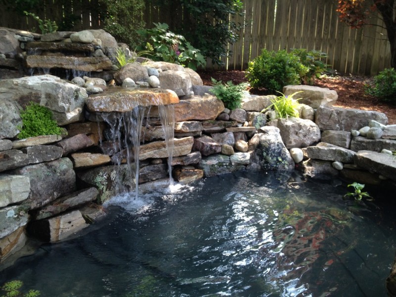 back yard pond fish stones fence plants tiny waterfall outdoor area traditional landscape