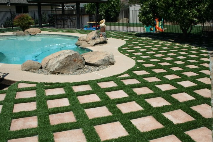 Backyard Paver Ideas Grass Framed Curved Swimming Pool Large Unique Sclupture