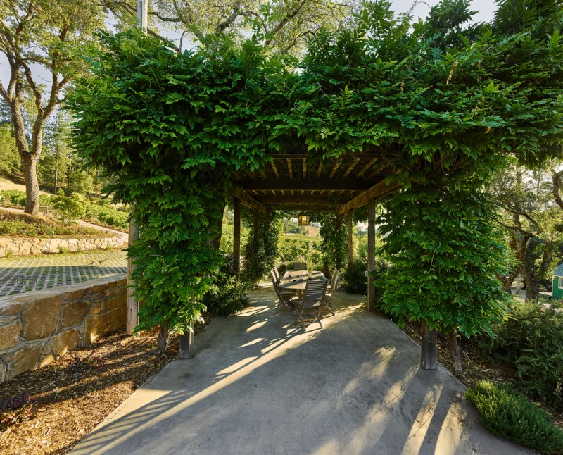 plants covered pergola made of hard wood wooden furniture for patio concrete floors