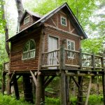 Small Rustic House Ladders Windows Doors Railing Pillars Grass Trees Cool And Beautiful Exterior