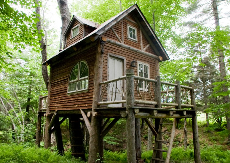 small rustic house plans ladders windows doors railing pillars grass trees cool and beautiful exterior