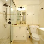 storage solution for small bathroom toilet cabinets lamps mirror shower traditional style