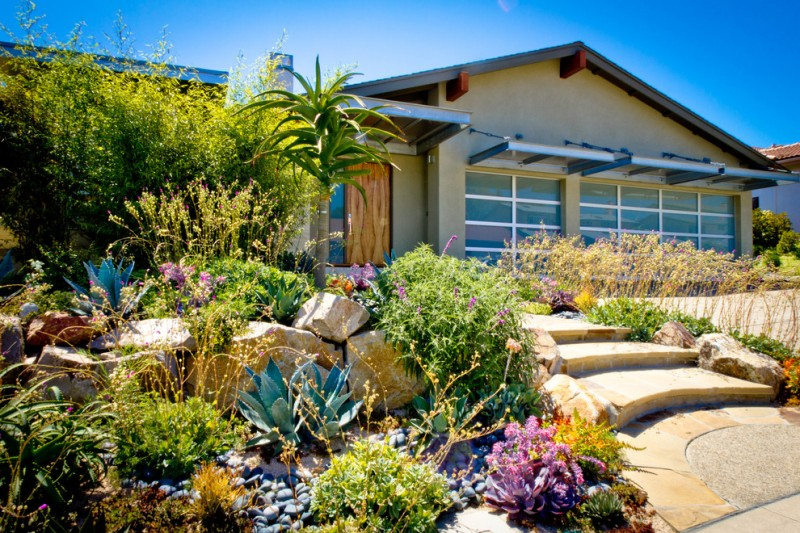 multi colored Aloe Vera front yard landscape design stone step beach pebble and decomposed granite large stone wooden door glass windows