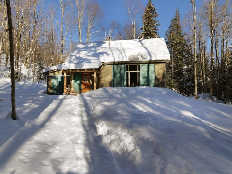 small rustic cabins trees door green sliding doors pillars cool lamp winter cabin