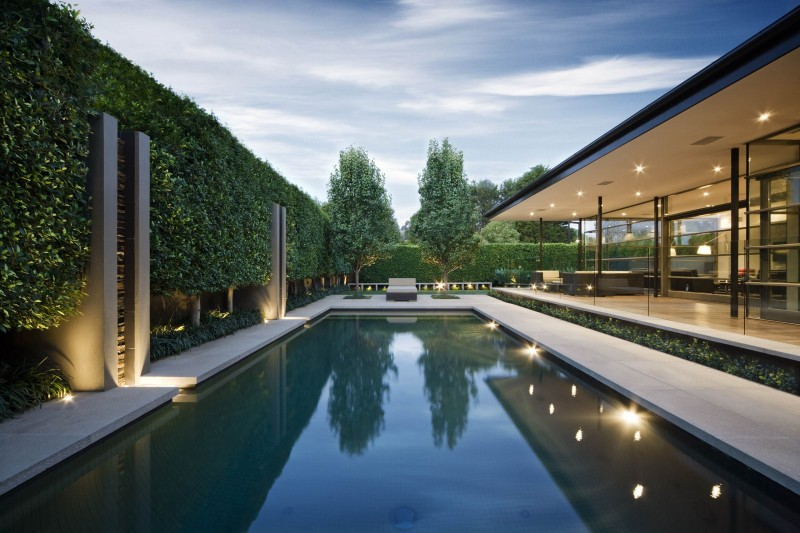pool trees patio hedges pool lights recessed lights