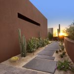 Concrete Wall Cactus Stone Paving Desert Landscape Contemporary House Flowers