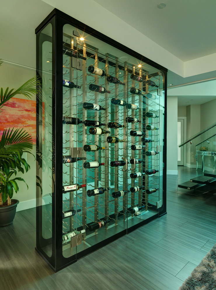 modern wine cellar black framed glass wine cellar wine racks wooden floor shag rug black stairs glass railing indoor plant