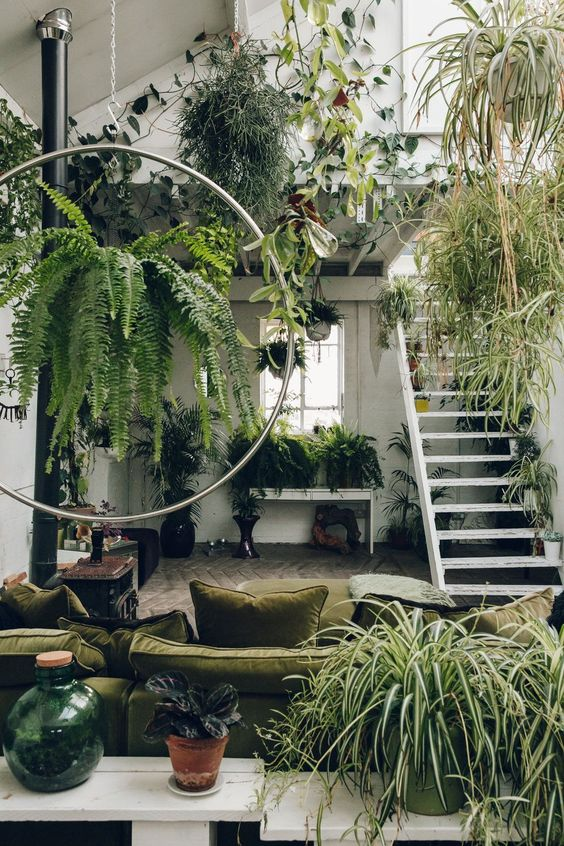 patio atrium with concrete floor, green sofa, circle ring, plants