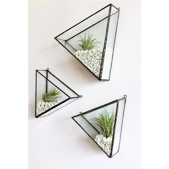 clear glass triangles with stones and small plants inside