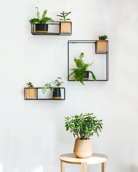 square wire shelves in different size, with one corner made for one same size small pots