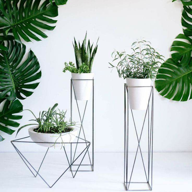 white pot with geometrical line support under