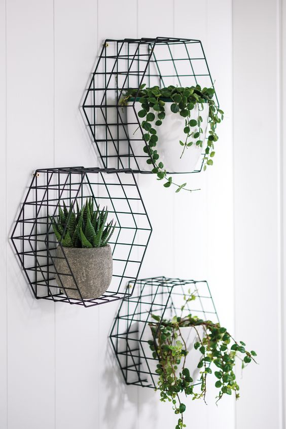 wire hexagonal cage shelves