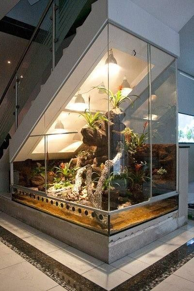 a big aquarium under the stairs with lamps, plants, wood