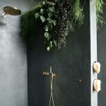 Bathroom Grey Concrete Floor, Concrete Wall, Shower, Plants On Top
