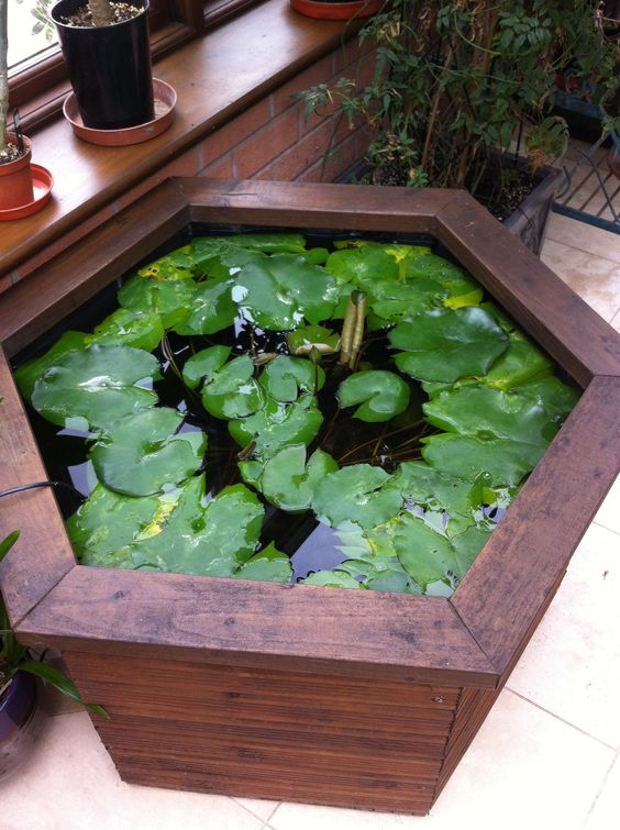 big wooden pot with lotus inside