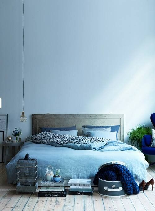 bedroom, blue wall, wooden floor, blue bedding, wooden bed platform, low coffee table,