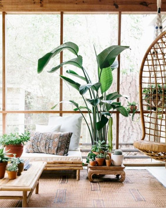 living room, white floor, brown rug, bamboo bench with cuhion, bamboo cofee table, rattan hanging chair, plant, wooden side table, large glass window