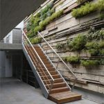 Vertical Garden On Woodn Boards On The Wall Near The Wooden Stairs