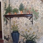Wall With Painted Stone, Plants On Pots, Hen, Chicken, And Real Wooden Floating Shelves