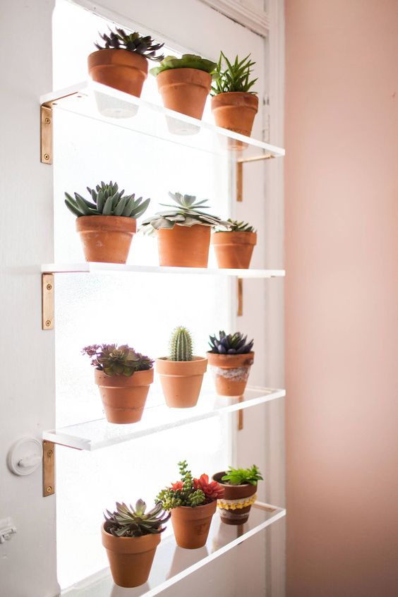 floating shelves of acrylic on the window with brown pot for plants