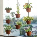 Hanging Plants On Brown Pot Near The Trellis Balcony