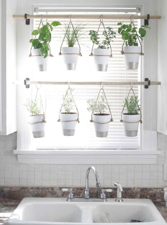 hanging pots for growing herbs in the kitchen window