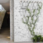Hexagonal Wire On The Wall, Open Brick Wall, Vine, Black Long Pot