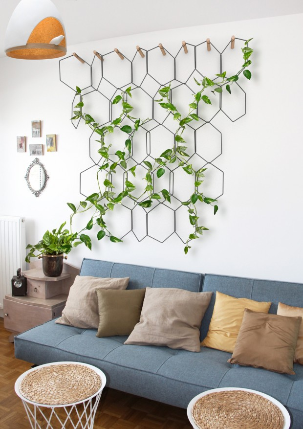 hexagonal wire on the wall, vine plants, plant on pot, blue sofa, wooden floor, rattan stool, white wall