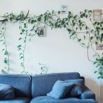 Home Indoor Wall Climbing Plants Inspirations
