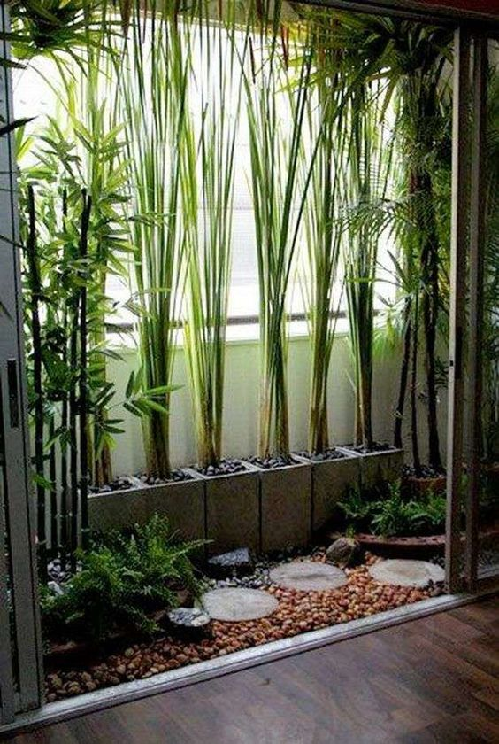 window with plants on pots, river stones, path tiles