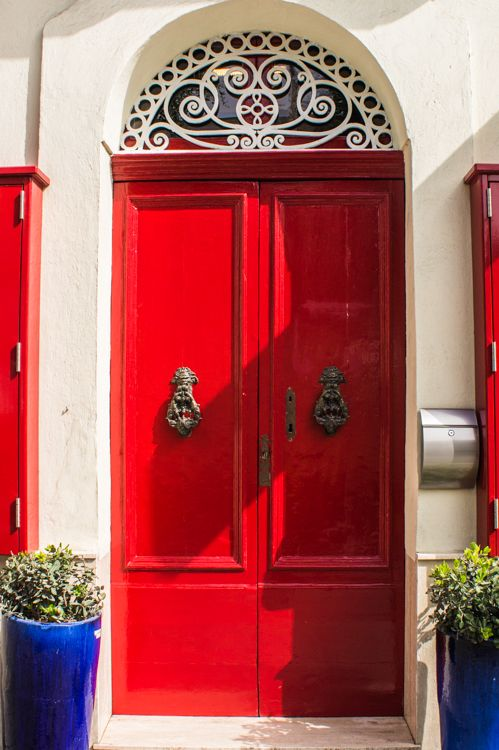 red door, knockers, white detailed patterned wire, blue plants top