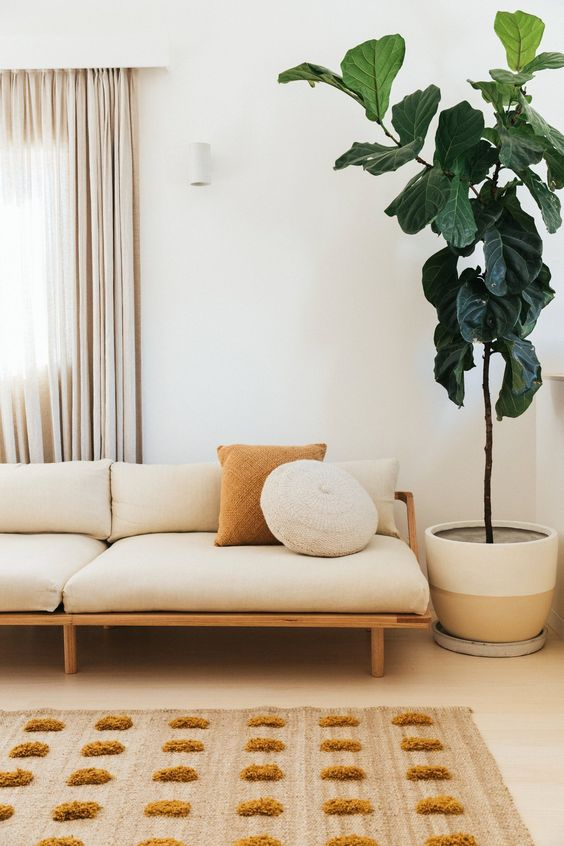 living room, off white floor, white wall, white modern simple bench with cushion, rug, plants, white curtain