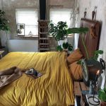 Bedroom, Wooden Floor, White Wall, Leather Headboard, Yellow Bed Cover,