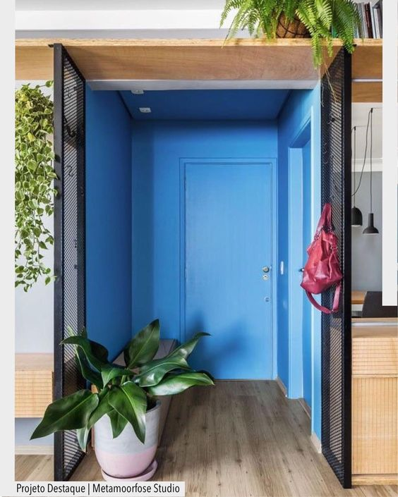 entrance, wooden floor, blue painted wall