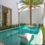 Pool, Brown Marble, White Stones, Palm Tree, White Wall